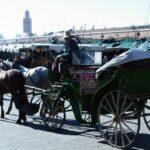 Calesa en la Plaza Jemaa El Fna de Marrakech - Marruecos