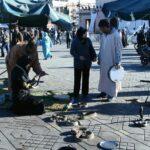 Encantadores de serpientes en la Plaza Jemaa El Fna de Marrakech - Marruecos