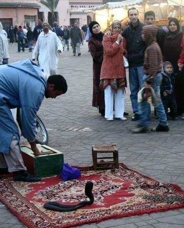 Encantador de serpientes en la Plaza Jemaa El Fna de Marrakech - Marruecos