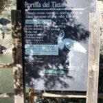 Información sobre rapaces en el mirador Portilla del Tietar en Monfrague en Extremadura