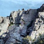 Aves rapaces en el Salto del Gitano en Monfrague en Extremadura