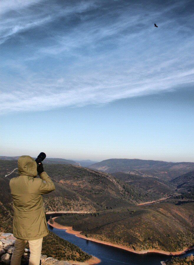 Avistamiento de rapaces desde el Castillo de Monfrague en el parque nacional en Extremadura