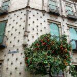 Casa del Barrio de Santa Cruz en Sevilla