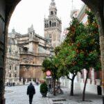 Vista de la Giralda desde el Patio de Banderas en el Barrio de Santa Cruz de Sevilla