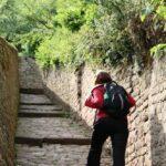 Sendero de subida al paseo de los Filósofos en Alemania