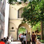 Jardines de la Catedral de la Encarnación de Málaga