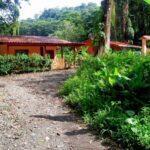 Camino de acceso a las casas de alquiler en Puerto Viejo en Costa Rica