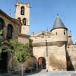 Entrada al Castillo Palacio Real de Olite en Navarra