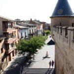 Torre y muralla del Castillo de Olite en Navarra