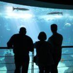 Gran acuario del Oceanario en el Parque de las Naciones de Lisboa