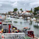 Puerto de Boyardville en la isla de Oléron al oeste de Francia