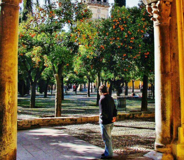 Patio de los Naranjos desde Puerta de Santa Catalina en la Mezquita de Córdoba