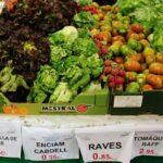 Frutas y hortalizas en la Cooperativa de Cambrils