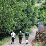 Ruta de senderismo Garganta de las Nogaledas en Valle del Jerte