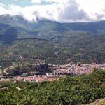 Paisaje de cerezos en el Valle del Jerte