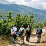 Ruta de senderismo entre cerezos en el Valle del Jerte