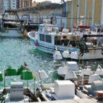 Puerto pesquero de Vinaroz en Castellón
