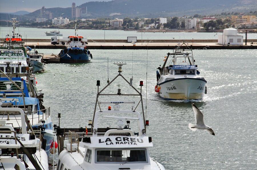 Puerto pesquero de San Carlos de la Rápita en Tarragona