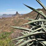 Paisajes en los alrededores de Tejeda en la isla de Gran Canaria