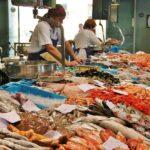 Mercado en la lonja del puerto de Palamós en Bajo Ampurdán