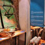Objetos expuestos en el Museo de la Pesca en el puerto de Palamós