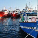 Barcos de pesca en el puerto de Palamós en Bajo Ampurdán