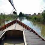 Excursión en barca tradicional por la Albufera de Valencia