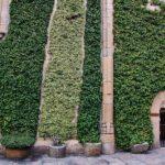 Rincón del recinto amurallado de Trujillo en Extremadura