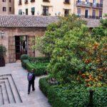 Patio de los naranjos en la Lonja de la Seda en Valencia