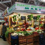 Puestos de venta de futras y verduras en el Mercado Central de Valencia