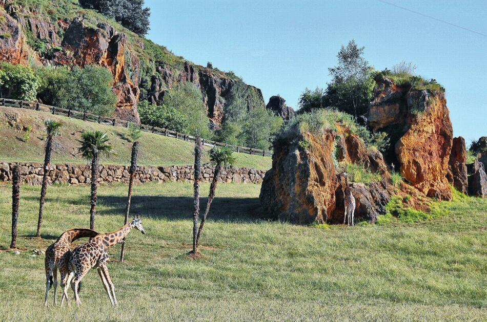 Parque de la naturaleza de Cabárceno en Cantabria