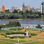 Biblioteca con jardín en la terraza en Varsovia