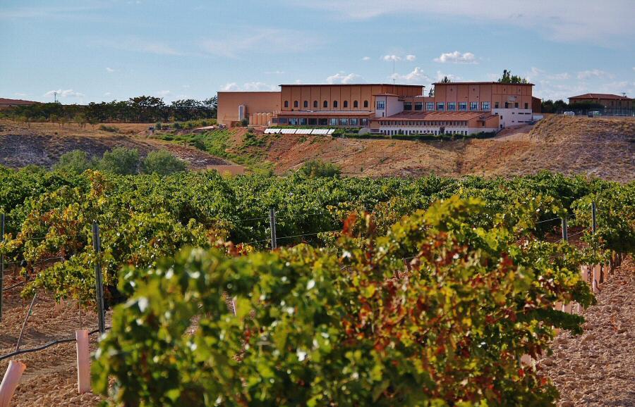 Enoturismo en Finca la Estacada en Tarancón en Cuenca