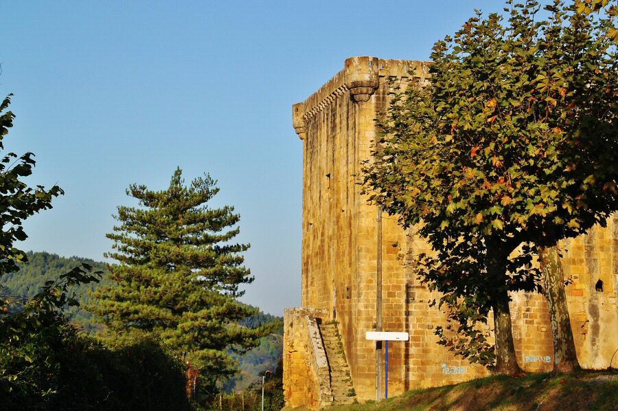 Torre Martiartu en la comarca de Uribe cerca de Bilbao