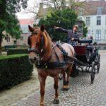 Paseo por Brujas en carruaje de caballos