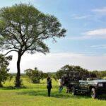 Momento de descanso durante el safari del parque Kruger