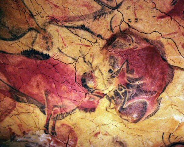 Réplica de pinturas de bisontes en la Neocueva de Altamira en Cantabria