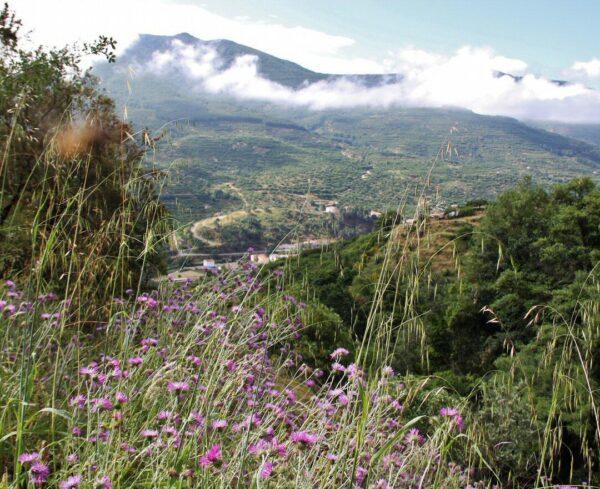 Paisajes del Valle del Jerte desde la Garganta de las Nogaledas