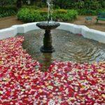 Jardín de la Hacienda Compañía de Jesús cerca de Quito