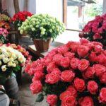 Exposición de rosas en Hacienda Compañía de Jesús cerca de Quito