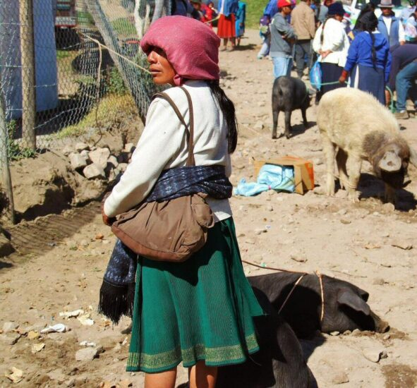 Indígenas otalaveños en el mercado de animales de Otavalo cerca de Quito