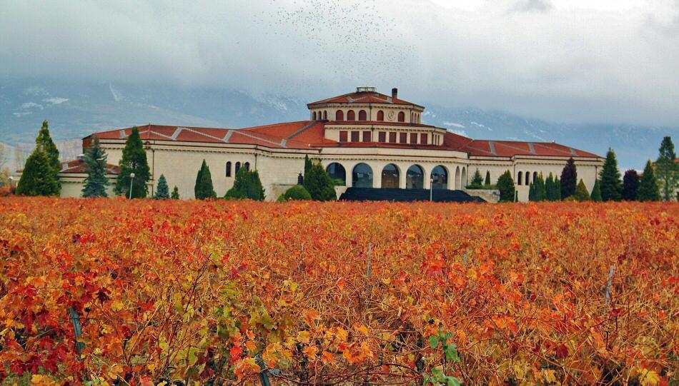 Bodega en Laguardia en Rioja Alavesa