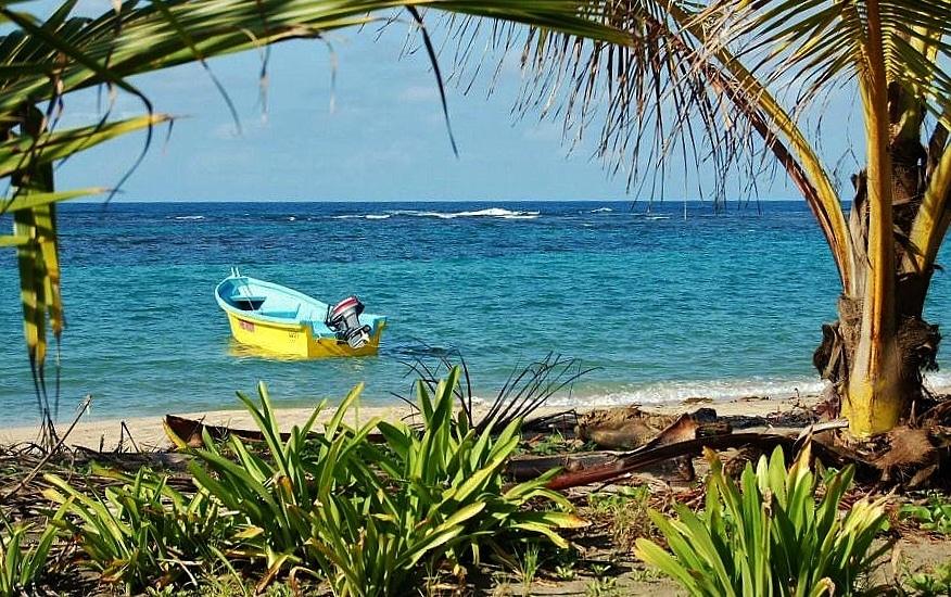 Playa con palmeras en Manzanillo en el Caribe Sur de Costa Rica