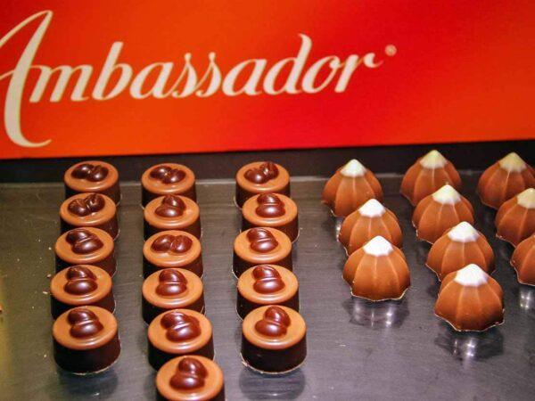 Desgustación de chocolate en la fábrica Cailler en Suiza