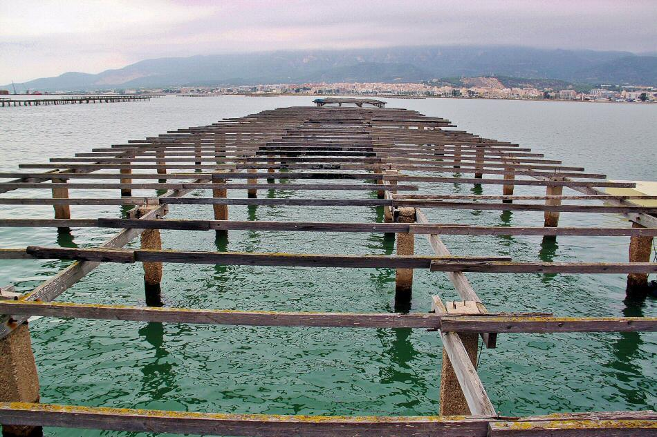 Mejilloneras en la Bahía de los Alfaques en el Delta del Ebro en Tarragona