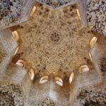 Sala de los Abencerrajes en la Alhambra de Granada