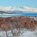 Paisaje invernal en los alrededores de Tromso en Laponia Noruega