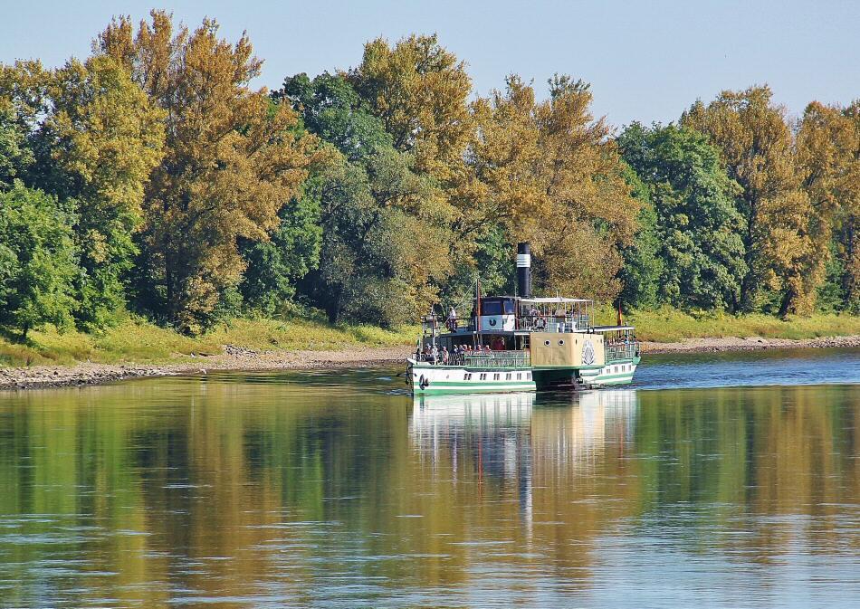 Crucero en barco de vapor por el río Elba en Dresde