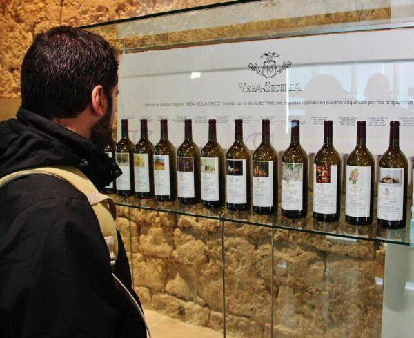 Museo del Vino en castillo de Peñafiel en Valladolid