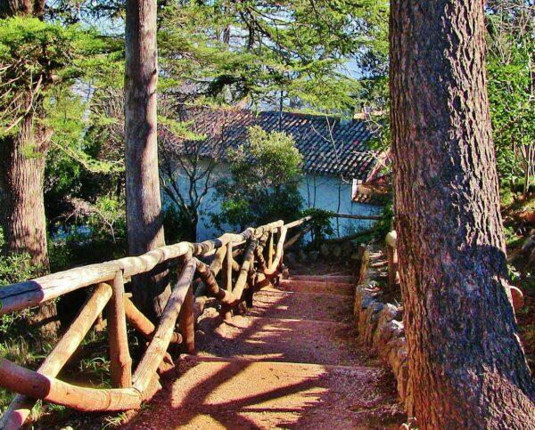 Parque natural de la Font Roja en Alcoy